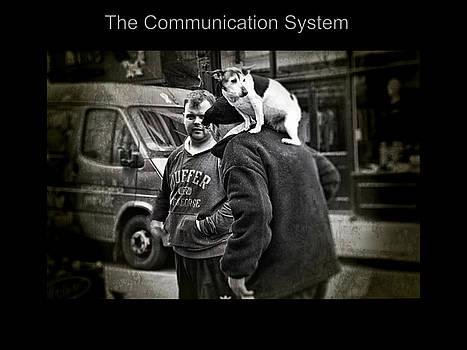 Nicole Frischlich - The Communication System