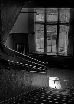 David Patterson - The Conversation Window