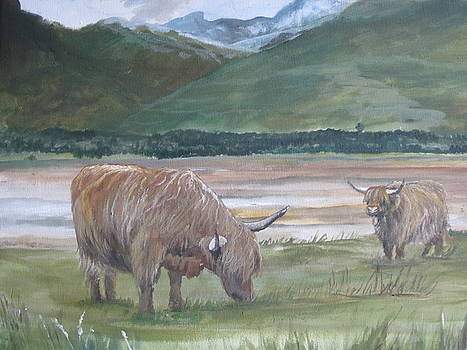 The Coos of Lochcarron by Cindie Reiter