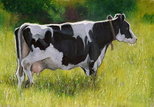 Joyce Geleynse - The Cow