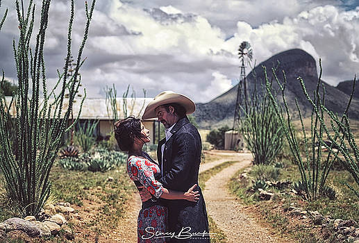The Cowboy and the Lady by Stacy Burk