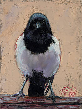 The Crabby Magpie by Billie Colson