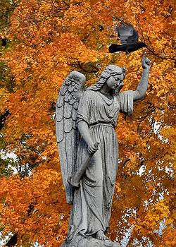 Gothicrow Images - The Crow Flies Off Into Autumn
