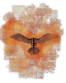 Sarah Kirk - The Da Vinci Flying Machine