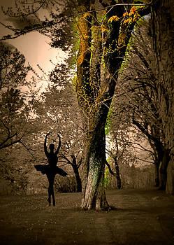 The Dancer by Myrna Migala