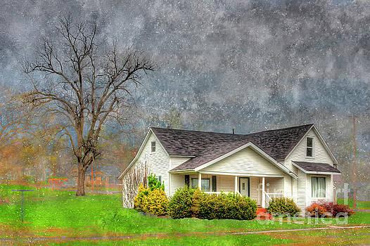 Larry Braun - The Dannemiller House