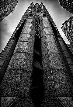 The Dark Tower by Neil Shapiro