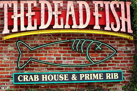 The Dead Fish by Joyce Dickens