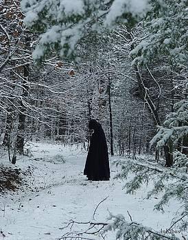 Alana  Schmitt - The Dead of Winter