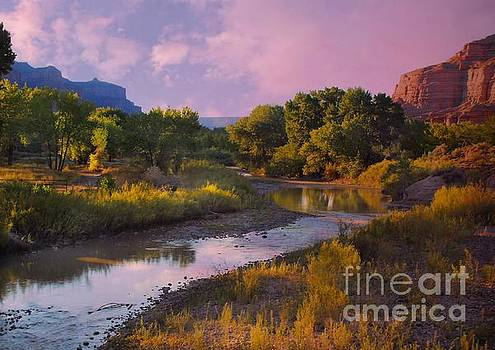The Delores River at Gate Way Colorado by Annie Gibbons
