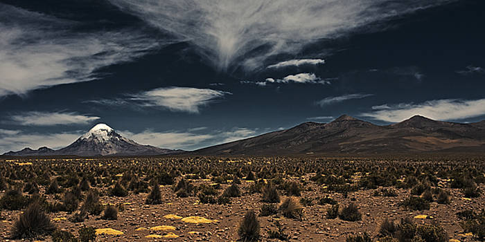 The Desert And The Snowcap by Ron Dubin