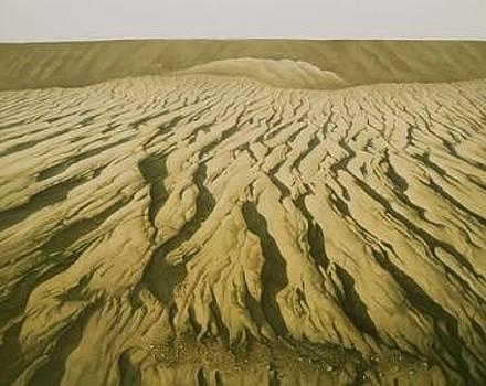 The Desert Land by Shuguang Liu