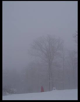Alana  Schmitt - The Distance 1