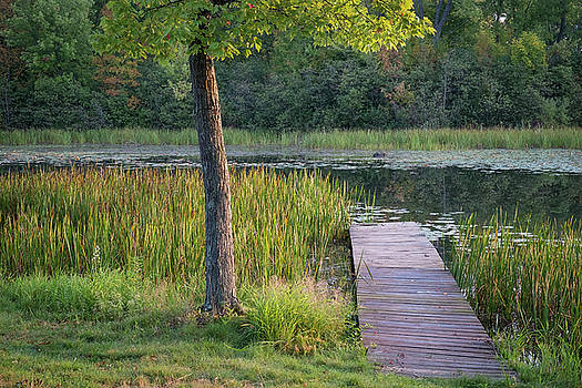 The Dock at Morning by Mary Lee Dereske