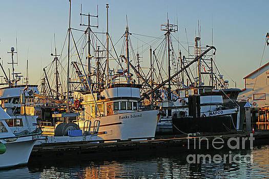 The Docks in Stevston by Randy Harris
