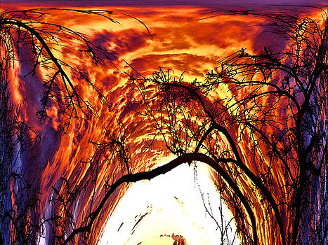 The Doorway by Patric Carter