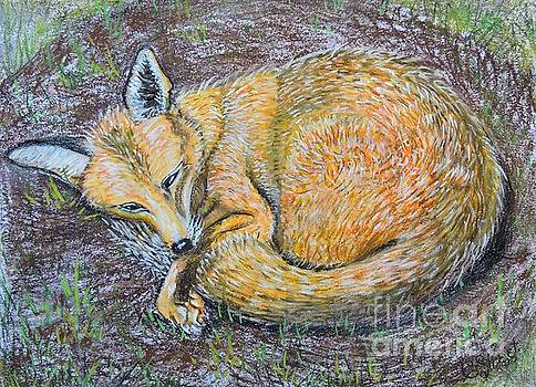Caroline Street - The Fox