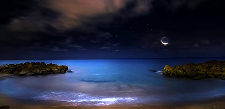 Moonrise Lagoon by Mark Andrew Thomas