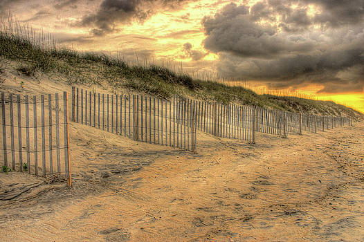 The Dunes by Dave Ross