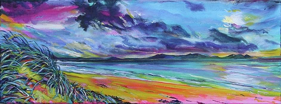 The Dunes of Aberffraw by Karin McCombe Jones
