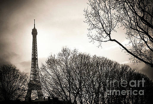 The Eiffel tower in backlighting. Paris. France. Europe. by Bernard Jaubert