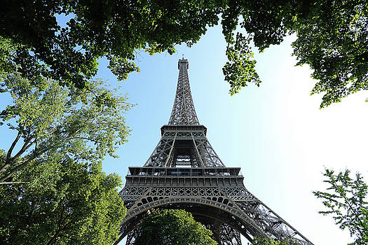 The Eiffel Tower surrounded by trees by Virginie Blanquart