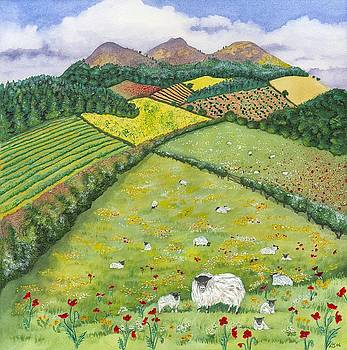 The Eildon hills in Spring by Lynne Henderson
