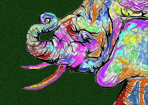 The Elephant by Darren Cannell