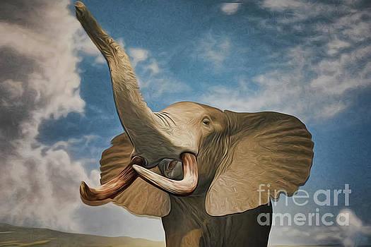 The Elephant by Ray Shrewsberry
