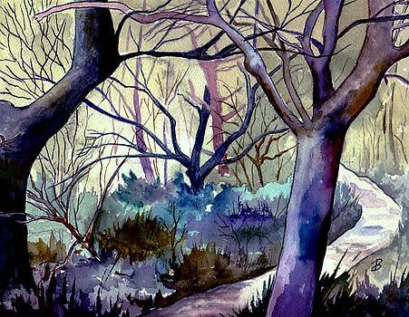 The Enchanted Path by Brenda Owen