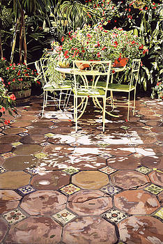 The Enchanted Patio by David Lloyd Glover