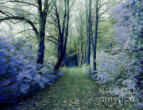 The Enchanted Wood by Chris Armytage