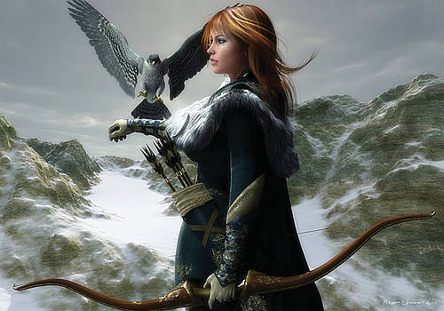 The Falconer by Melissa Krauss