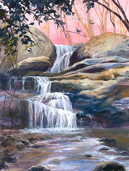 The Falls at Brick Mill, Sunrise by Ann Litrel