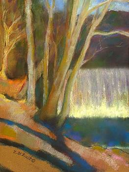 The Falls at Vickery Creek by Evelyn  M  Breit