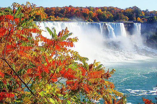 The Falls In Fall by Newman Artography