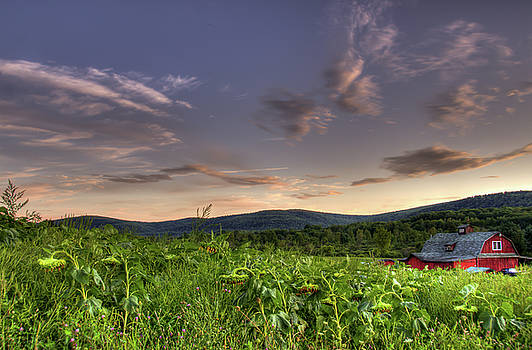 The Farm by Sander Hunter