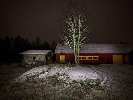 The Farm Yard by Jouko Lehto