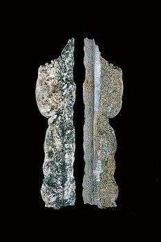 Nikolyn McDonald - The Feather Rock