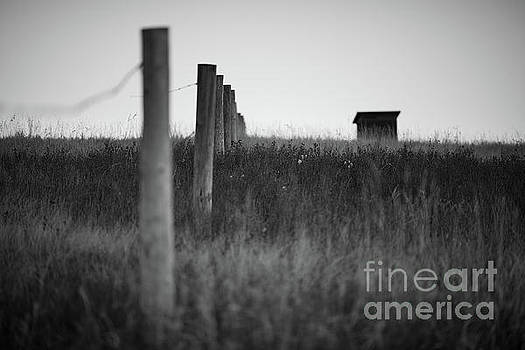 The Fence by Ian McGregor
