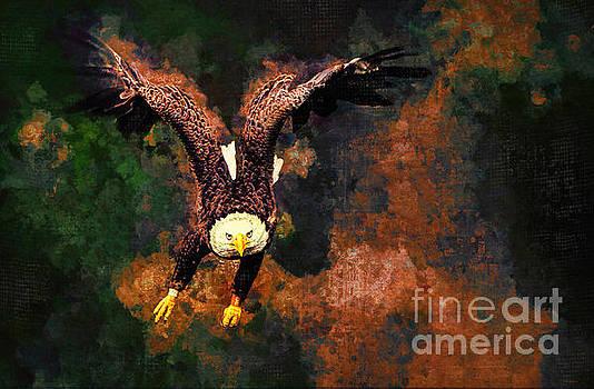 The Fierce Eagle by Tina LeCour