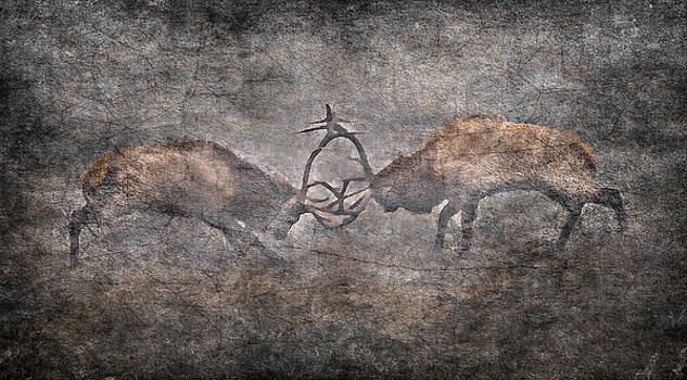The Fight by Garett Gabriel