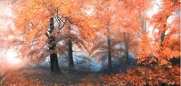 The Fire by Sorin Apostolescu