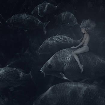 The Fish Rider by Anka Zhuravleva