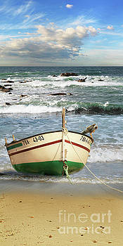 The fishing boat on the beach by Monika Juengling