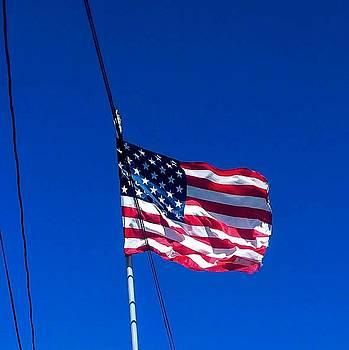 The flag of USA  by ONDRIA-UNIqU3-Pics- Admin