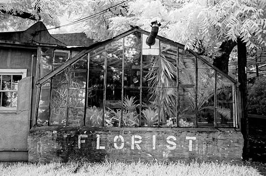 The Florist by Sander Hunter