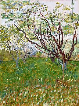 The Flowering Orchard by Artistic Panda