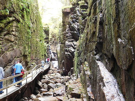 The Flume Gorge by Catherine Gagne