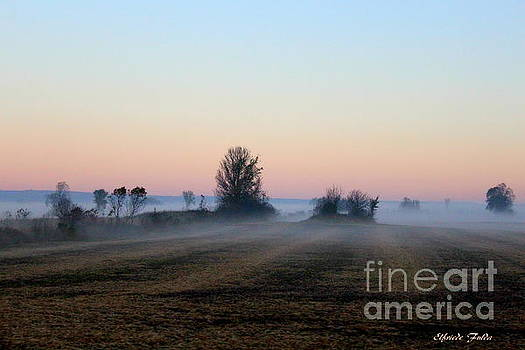 The Fog by Elfriede Fulda